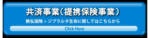 共済事業(提携保険事業)