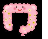 大腸のイラスト