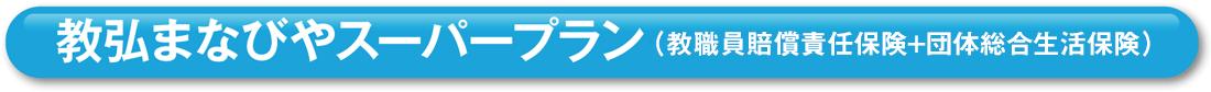 教弘まなびやスーパープラン(教職員賠償責任保険+団体総合生活保険)